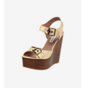 Steve Madden Wizarrd Gold Metallic Leather Wedge